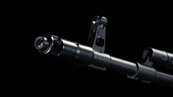 Гладкоствольный карабин TG2