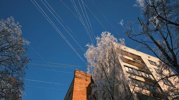 Заснеженные деревья возле жилых домов в Санкт-Петербурге