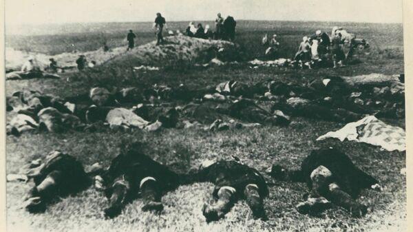 ФСБ рассекретила документы о массовых казнях жителей Крыма гитлеровцами