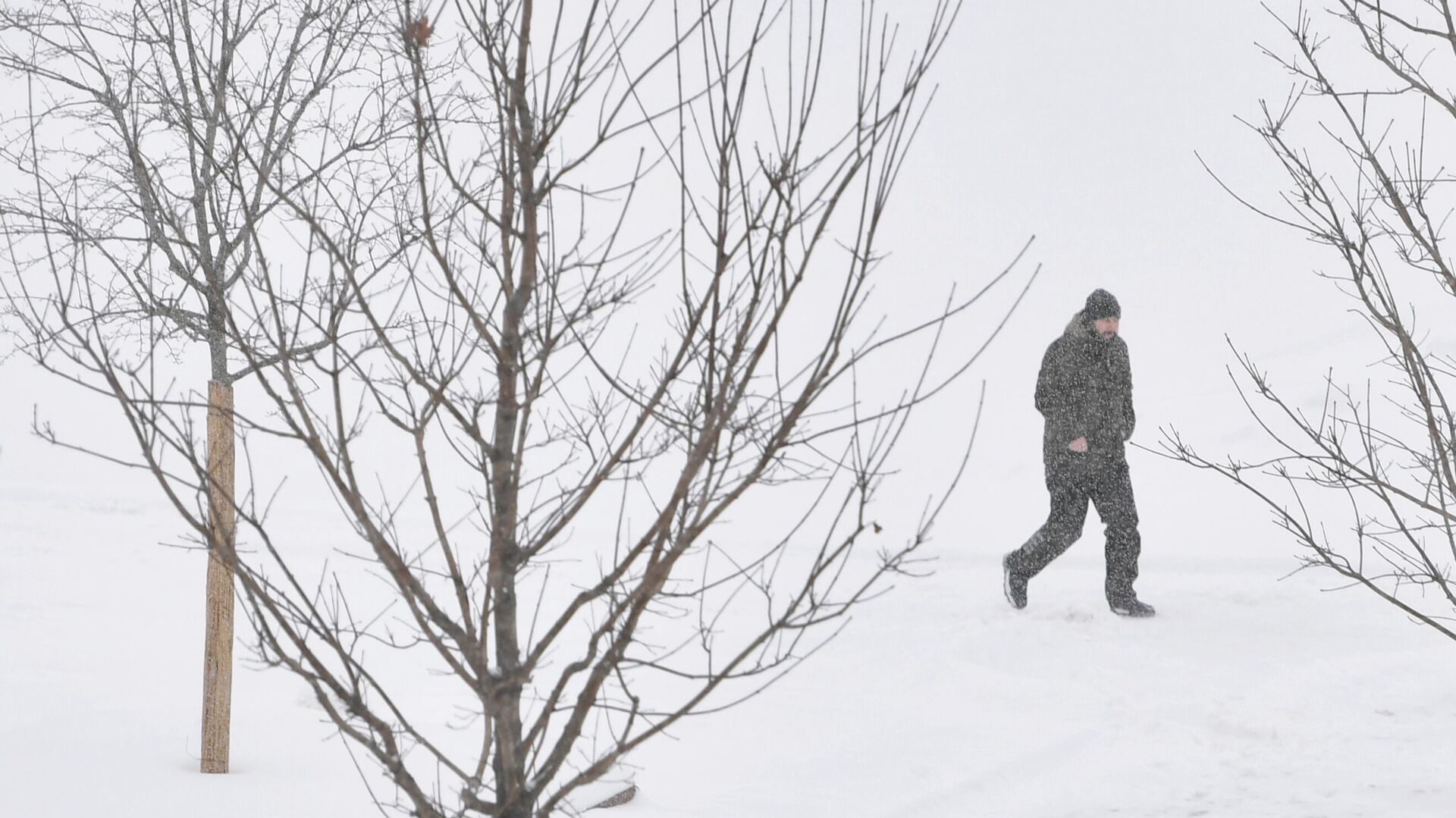 Мужчина во время снегопада в Москве - РИА Новости, 1920, 18.02.2021