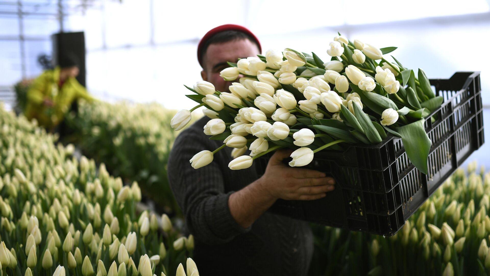Продавцы предупредили о рекордном подорожании цветов