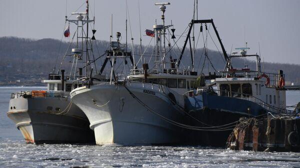 Рыбацкие суда у пирса в бухте Новик на острове Русский