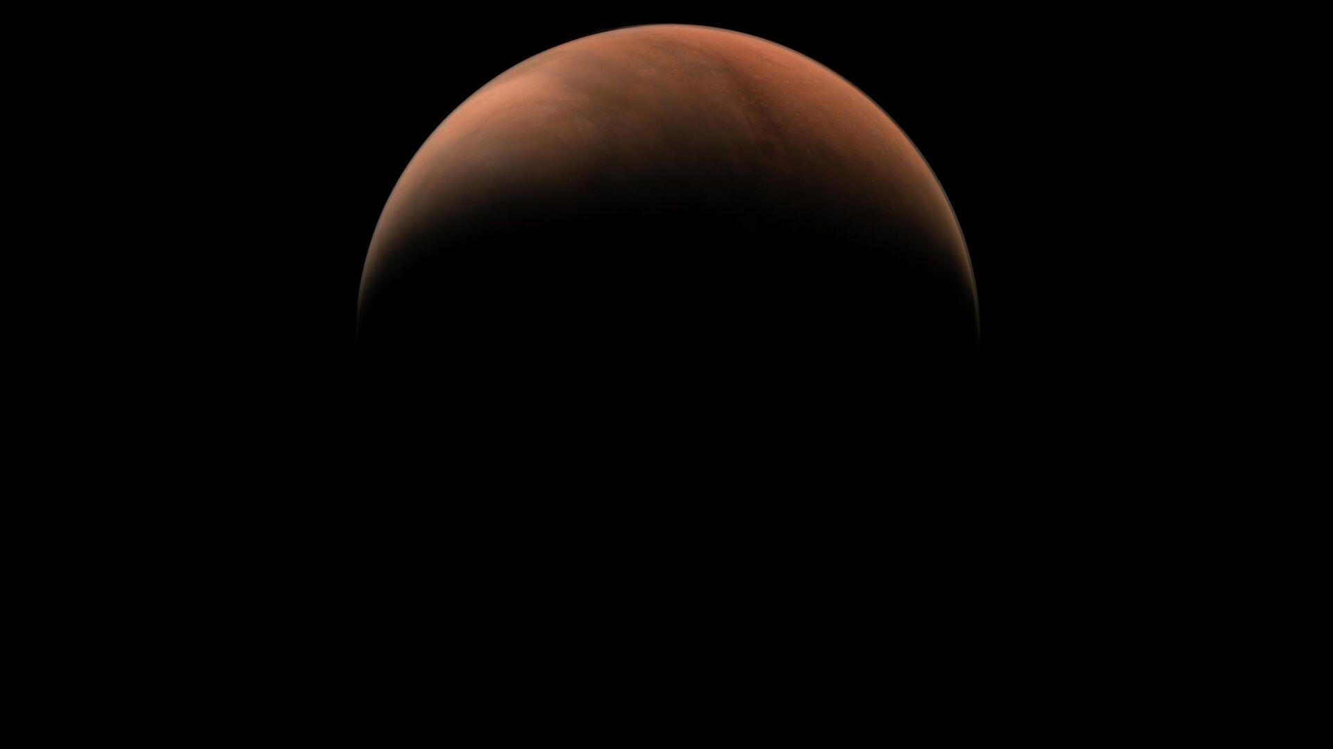 Маск не исключил, что покорение Марса потребует человеческих жертв