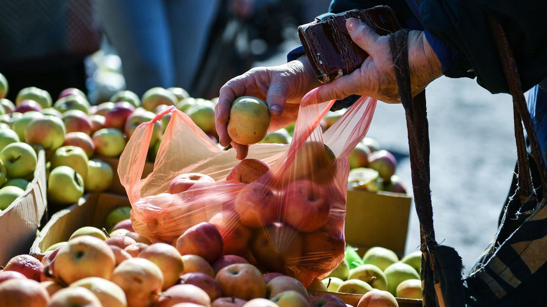 Круглогодичная ярмарка кубанских продуктов может открыться в Москве