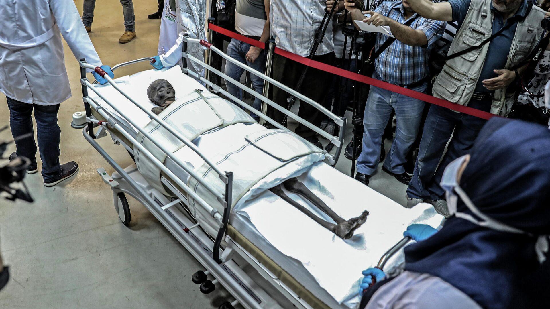 Древнеегипетская мумия Сеннеджема после извлечения из гроба для окуривания в Национальном музее Египта - РИА Новости, 1920, 31.03.2021