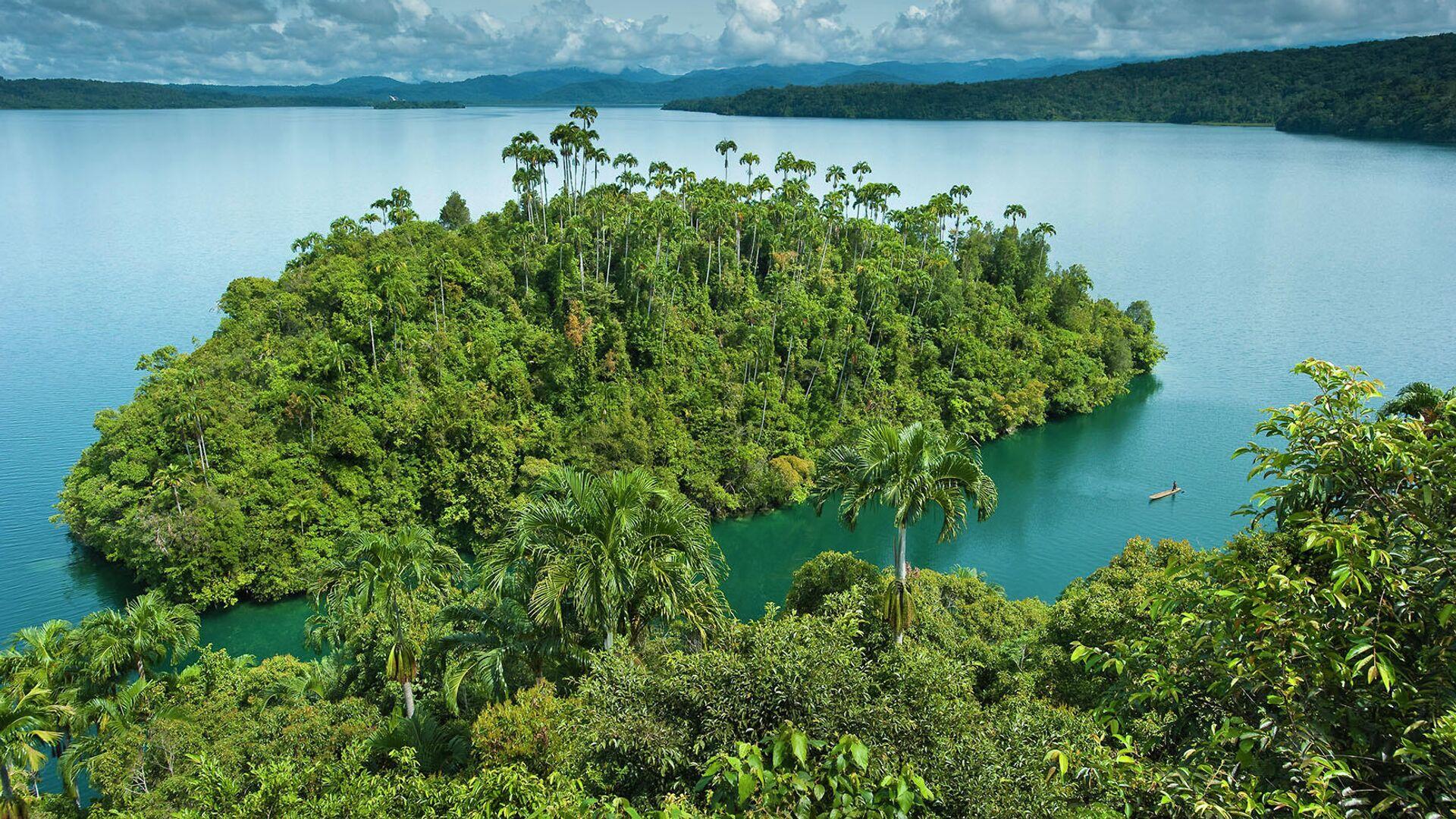 В Папуа-Новой Гвинее произошло землетрясение магнитудой 5,6 баллов