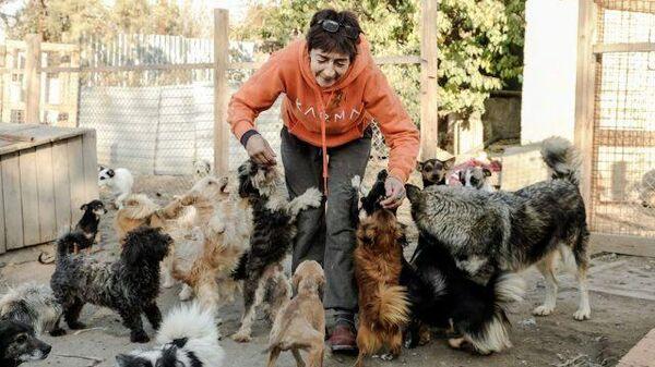 700 спасенных жизней: зоозащитница спасла собак и организовала приют
