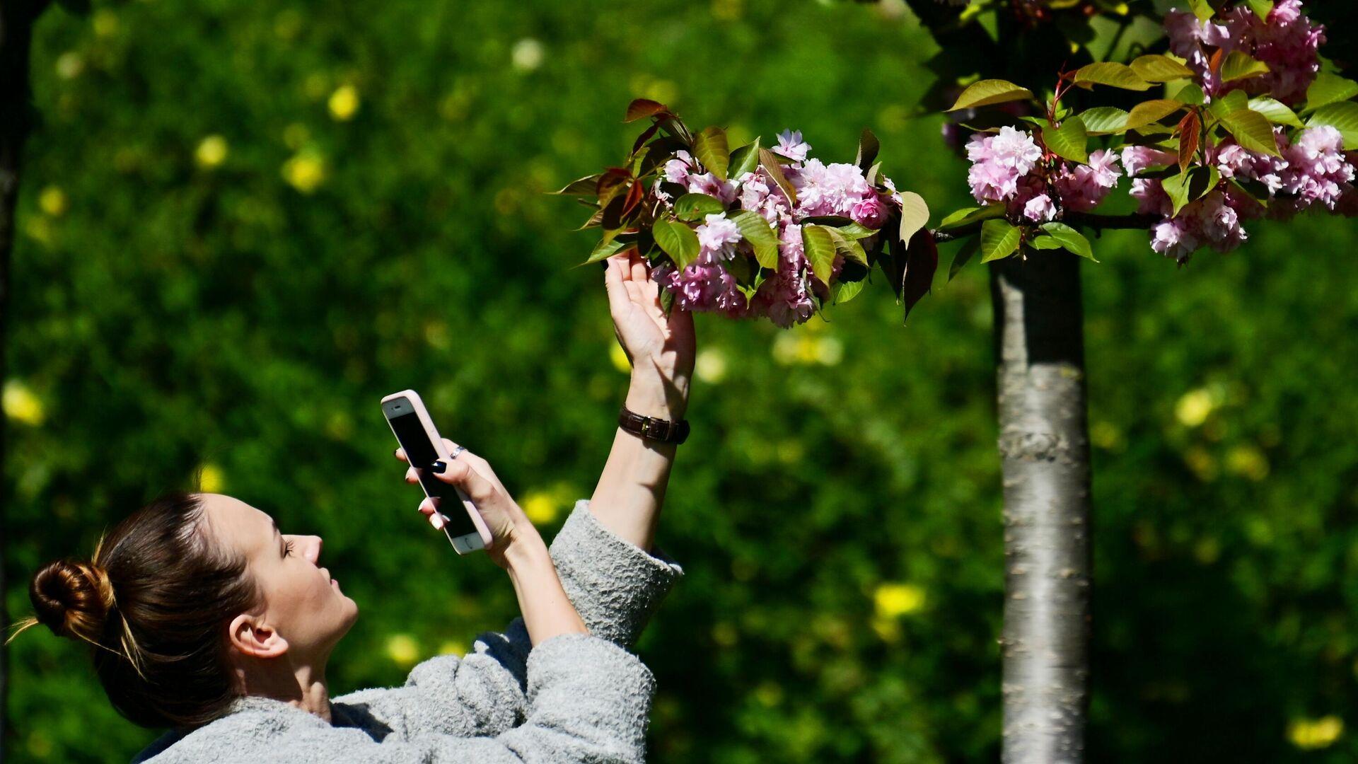 Девушка фотографирует цветы черешни на аллее Черешневый сад в Сочи - РИА Новости, 1920, 14.09.2021