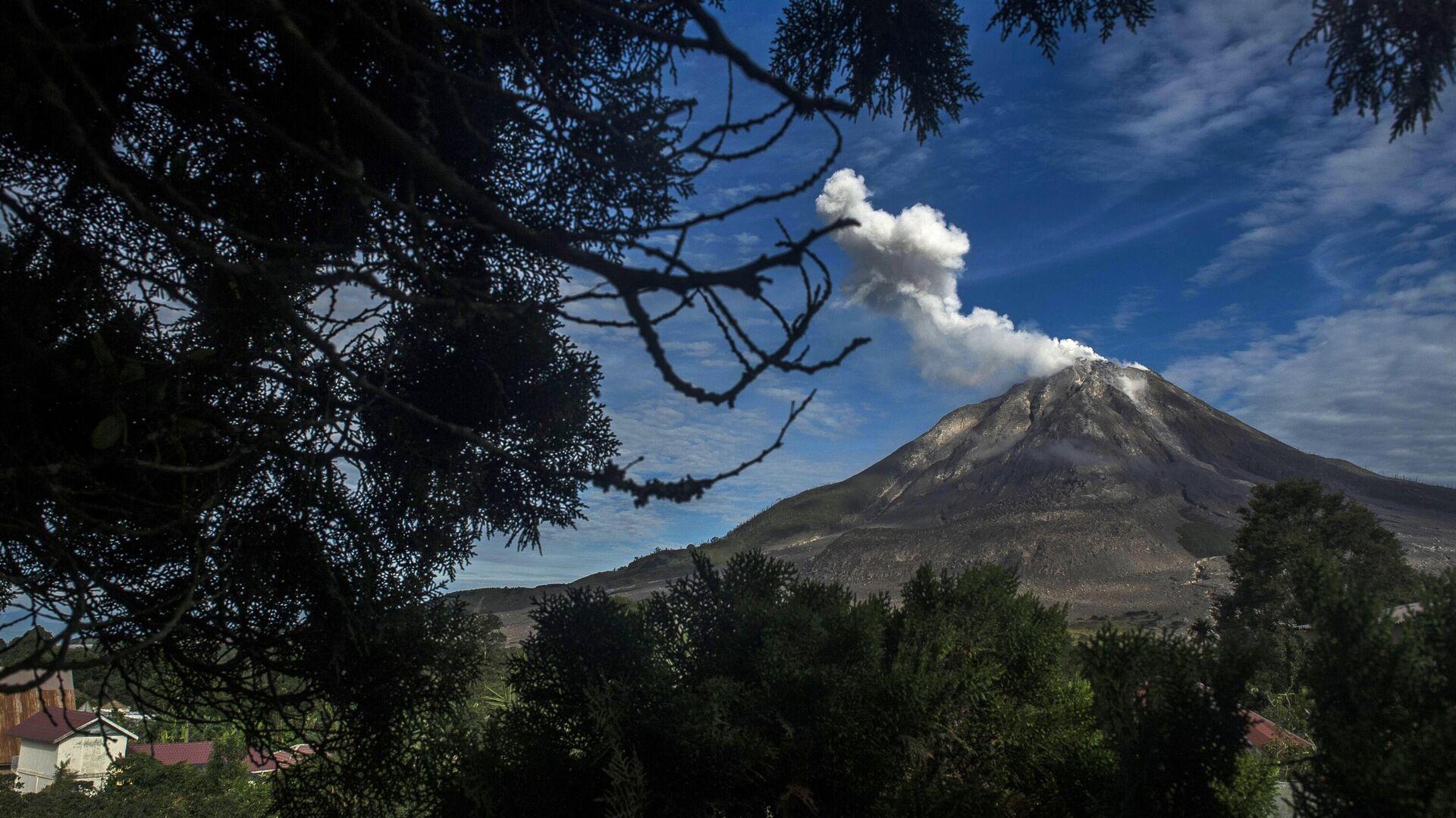 На Камчатке выброс пепла из вулкана угрожает авиасообщению