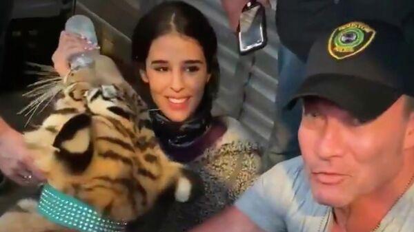 Полиция американского Хьюстона нашла тигра, который бродил по жилому району
