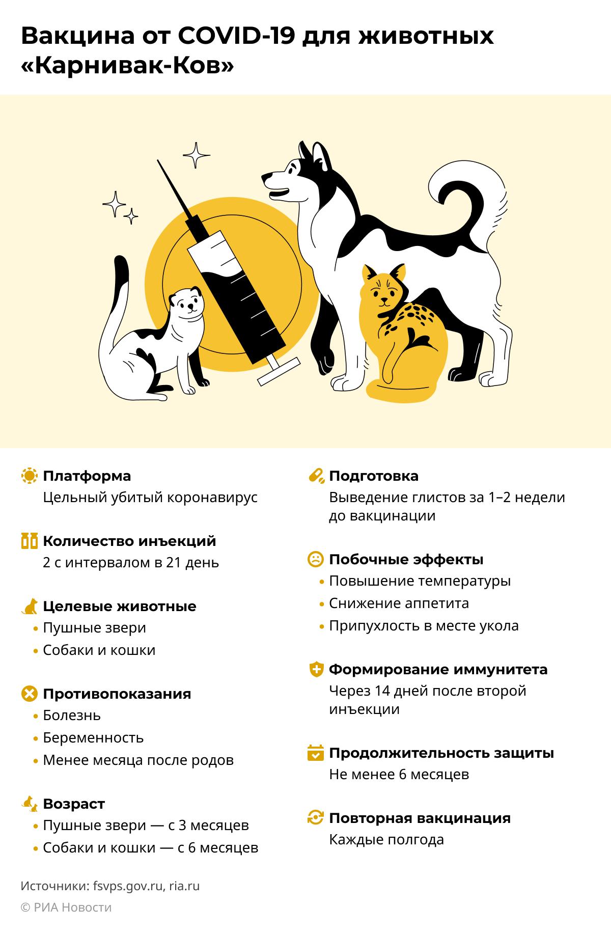 Российская вакцина от COVID-19 для животных Карнивак-Ков ДЕСКТОП
