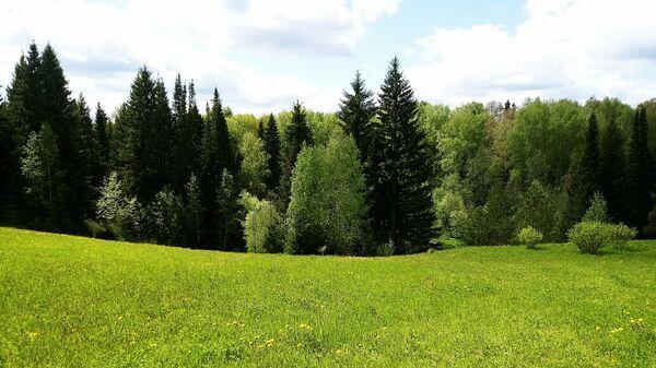 Территория биостанции ТюмГУ на озере Кучак в Нижнетавдинском районе