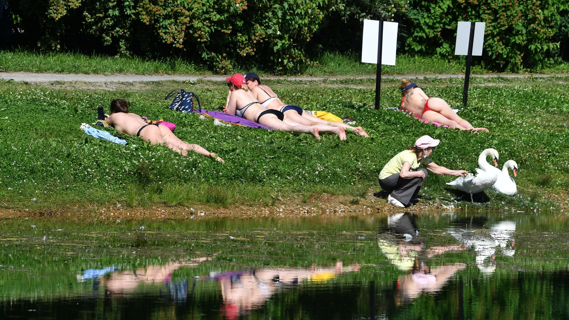 Люди загорают на газоне у пруда в жаркую погоду в парке культуры и отдыха Сокольники в Москве - РИА Новости, 1920, 01.07.2021