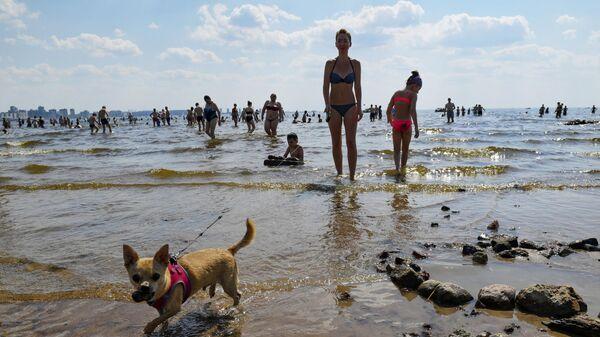 Люди купаются в море в жаркую погоду в парке 300-летия Санкт-Петербурга