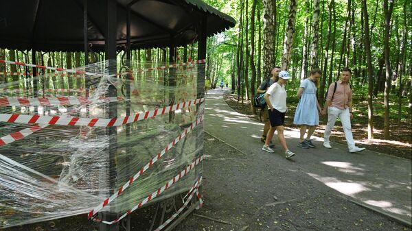 Молодые люди на аллее в парке культуры и отдыха Сокольники в Москве