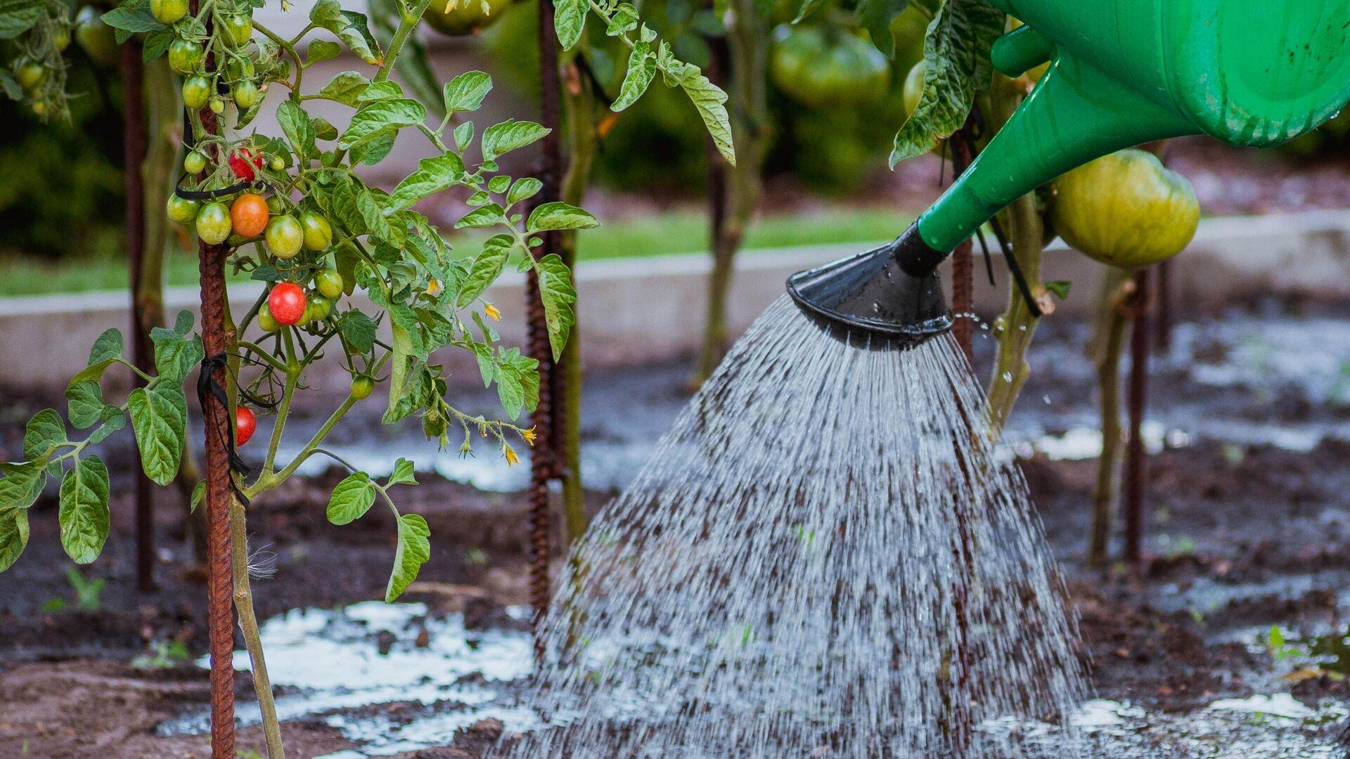Иванов призвал переходить на новые технологии в сельском хозяйстве