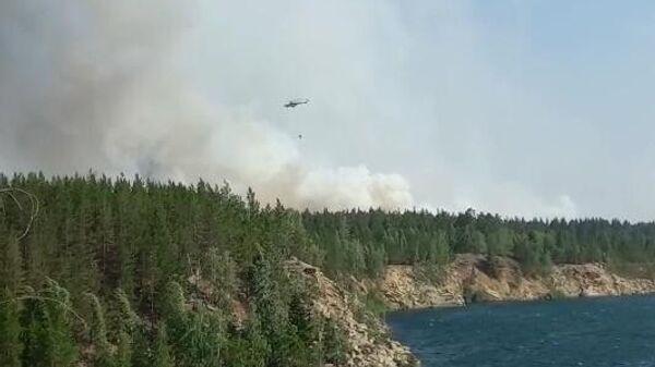 Лесные пожары в Челябинской области. Скриншот видео