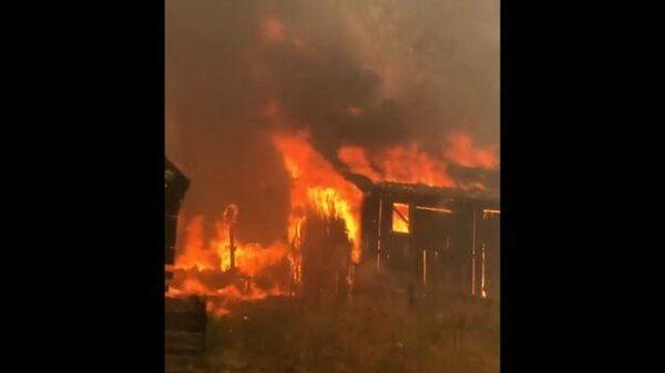 Лесные пожары в Карелии. Съемка очевидцев