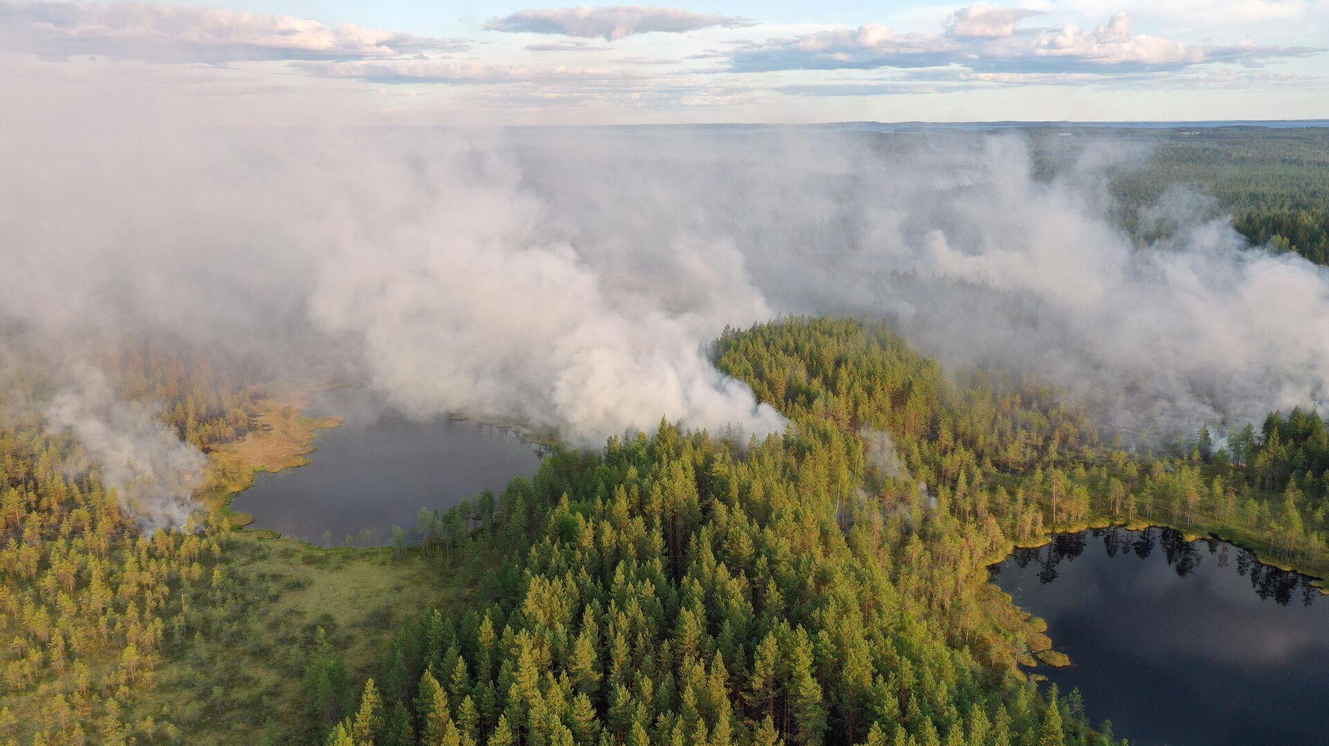 Горящие леса в районе Сямозера в Пряжинском районе Карелии - РИА Новости, 1920, 30.07.2021
