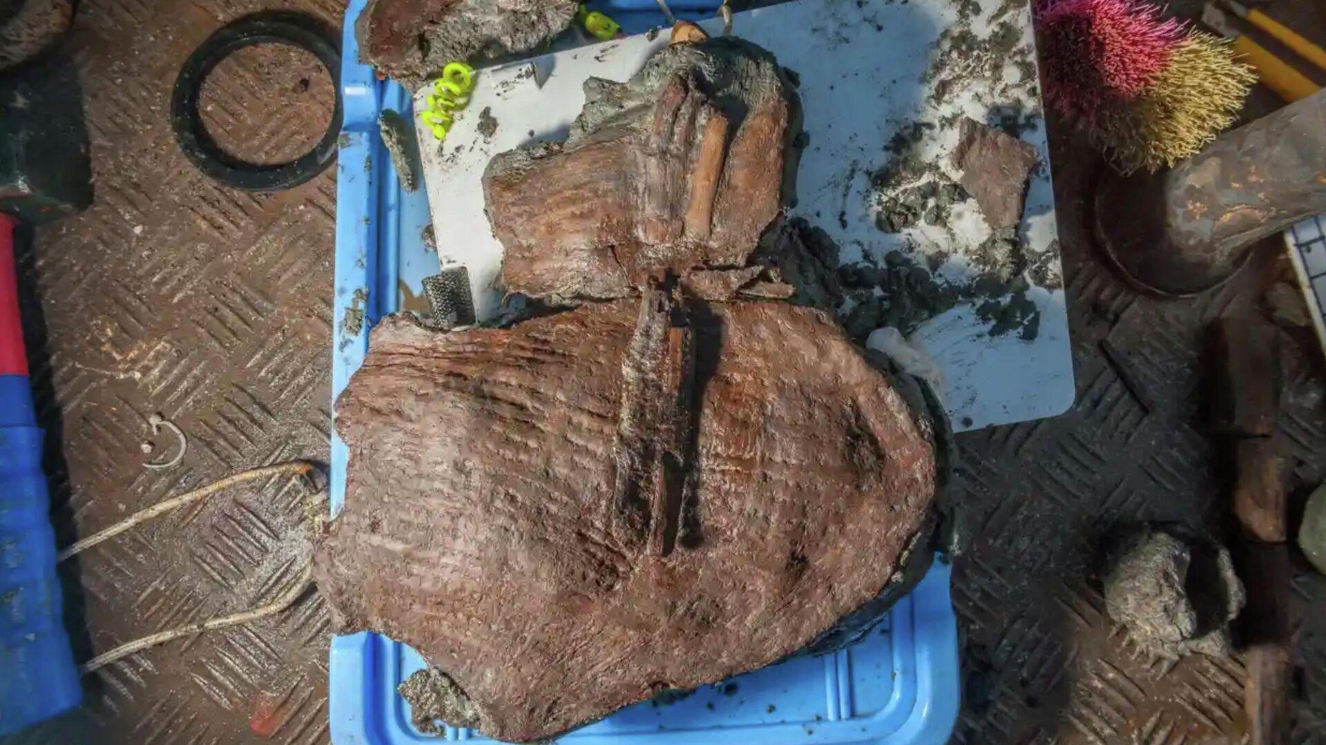 Корзина с фруктами, найденная во время исследования затонувшего древнеегипетского города Тонис-Гераклион - РИА Новости, 1920, 03.08.2021