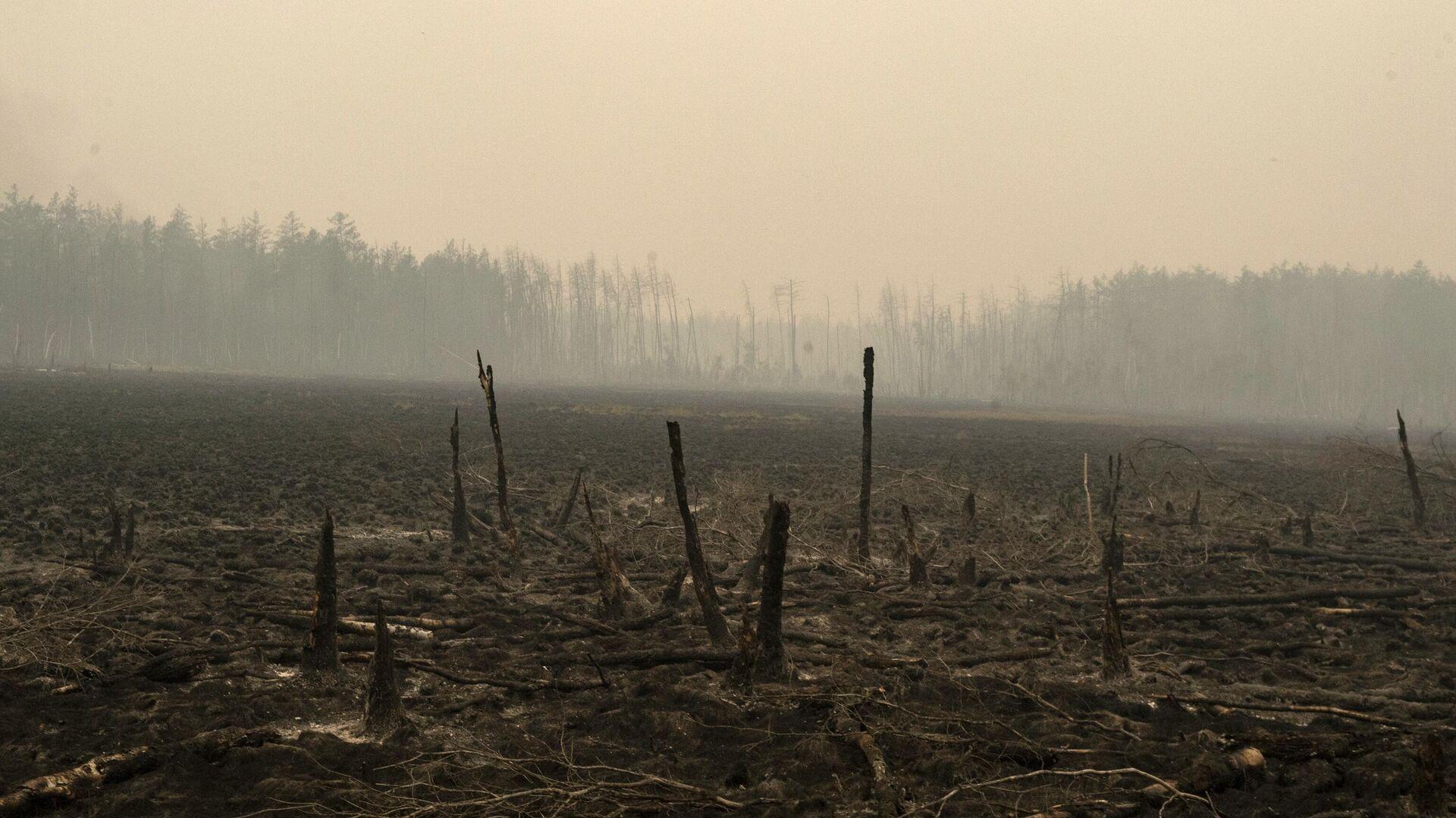 МЧС рассказало о ситуации с природными пожарами в Якутии