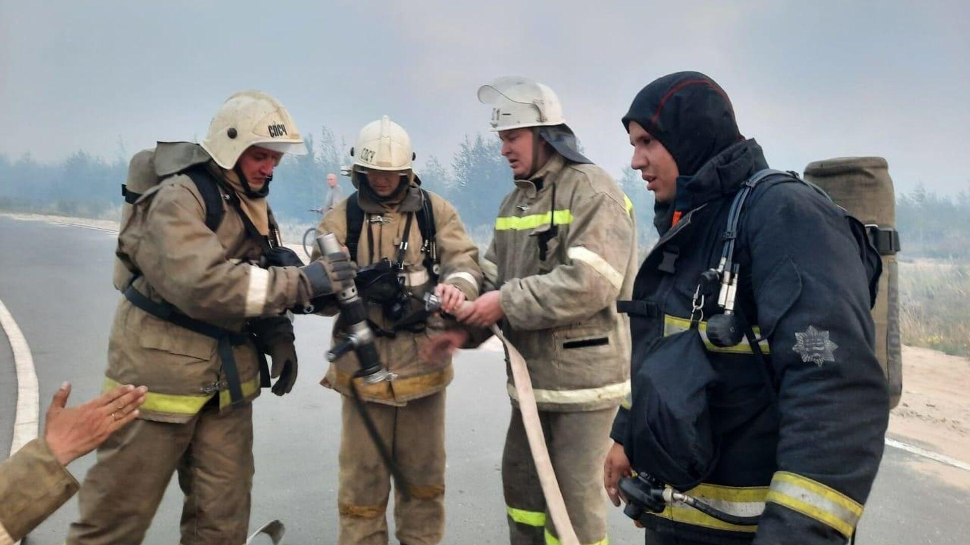 Прокуратура назвала причину лесного пожара в Марий Эл