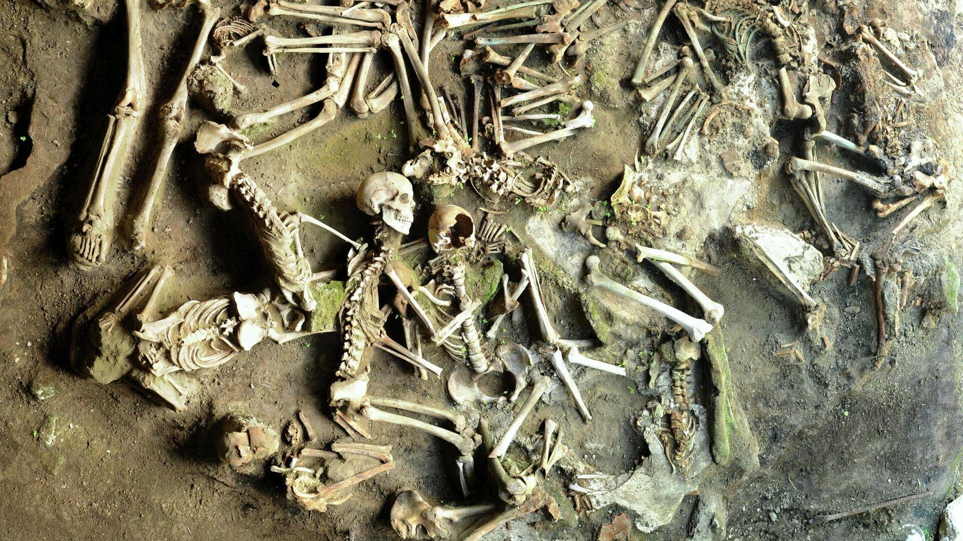 Ученые установили различия в рационе мужчин и женщин в Древнем Риме