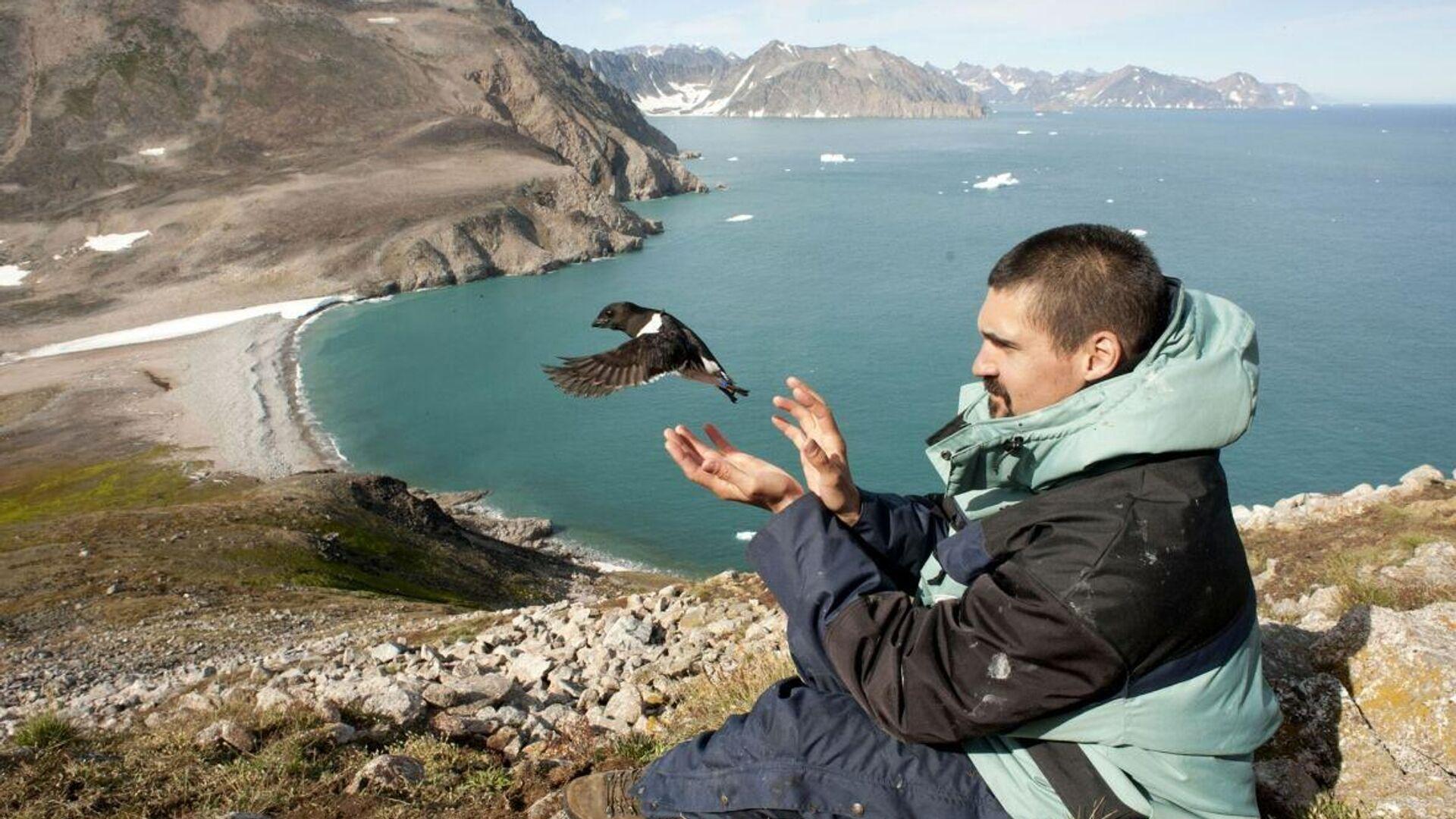 Раскрыт секрет гибели тысяч птиц в Европе и Америке