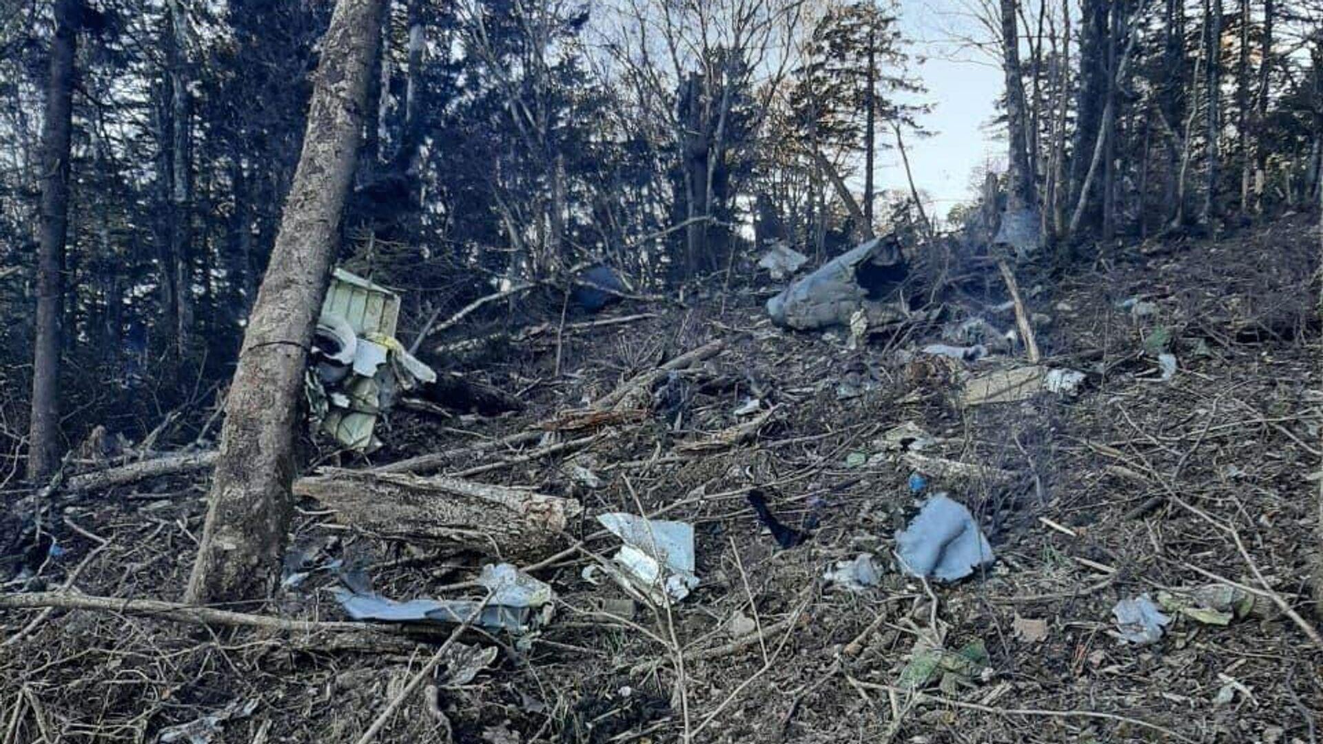 1751431689 0:285:960:825 1920x0 80 0 0 b9eb791490ccc2ab192ffe1b8d999d8b - Следователи обнаружили бортовые самописцы Ан-26, разбившегося в Хабаровском крае