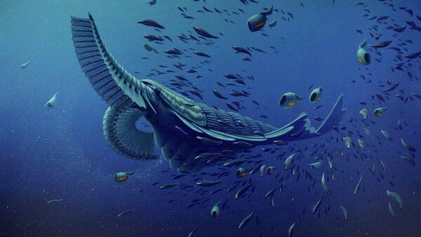 Так художник представил себе китовую акулу Кембрия Tamisiocaris borealis