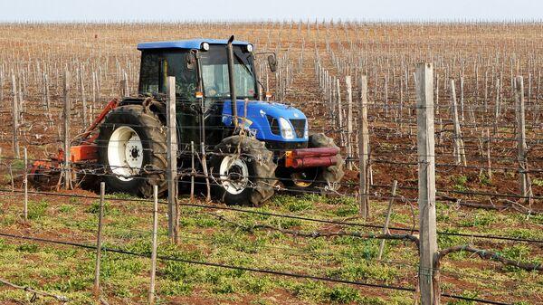 Сотрудники ЗАО Бурлюк вспахивают землю на территории виноградника в селе Каштаны Бахчисарайского района в Крыму