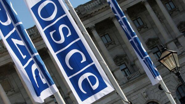 Флаги с логотипом ОБСЕ. Архивное фото