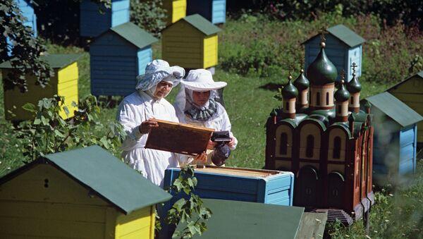 Монастырская пасека. Архивное фото