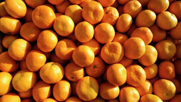 Египетские мандарины