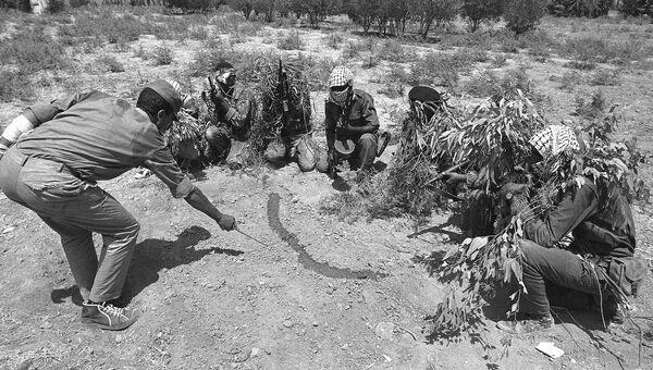 Члены партизанского отряда освобождения народа Палестины вблизи реки Иордан, 1968 год