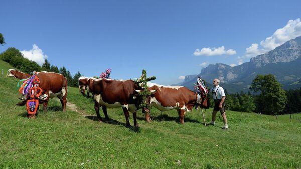 Австрийский фермер в традиционном наряде