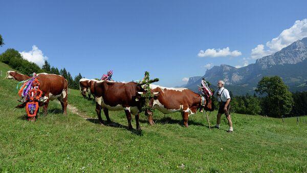 Австрийский фермер в традиционном наряде. Архивное фото