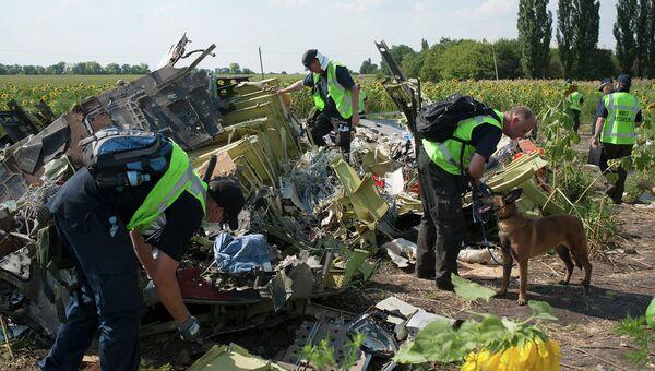 Международные следователи на месте крушения Boeing 777 компании Malaysia Airlines. Архивное фото