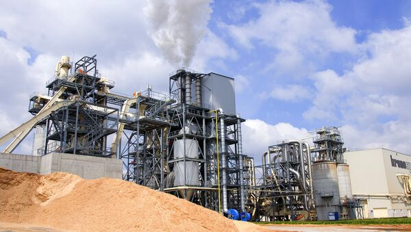 Производство биотоплива из древесины. Архивное фото