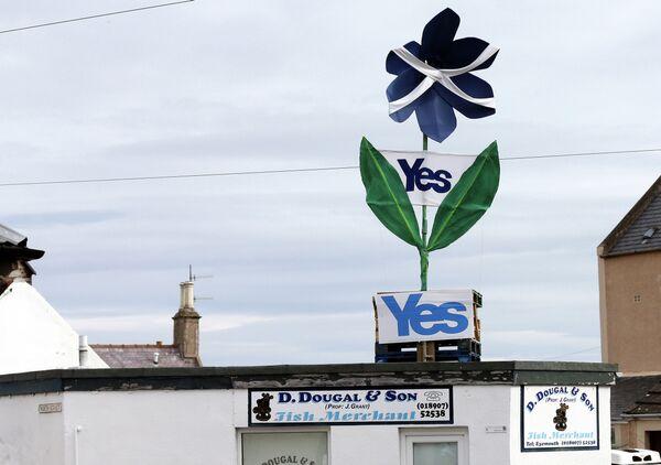Знак в поддержку независимости Шотландии над магазином