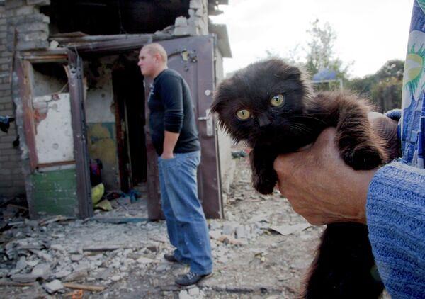 Котенок на руках у женщины рядом с разрушенным домом в Донецке