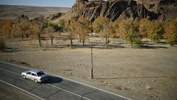 Автомобильная дорога М-52 в Республике Алтай. Архивное фото