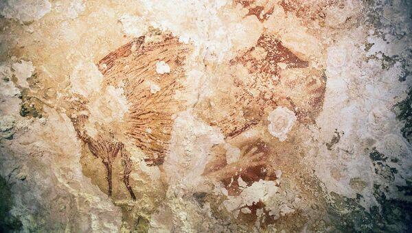 Изображения диких животных и трафаретные рисунки человеческих рук в пещере на индонезийском острове Сулавеси. 9 октября 2014