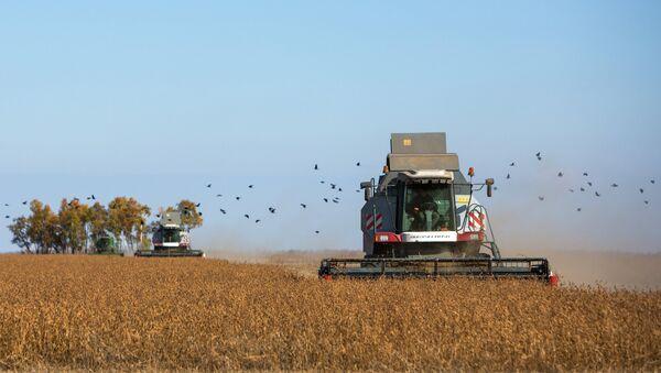 Комбайн убирает урожай на полях