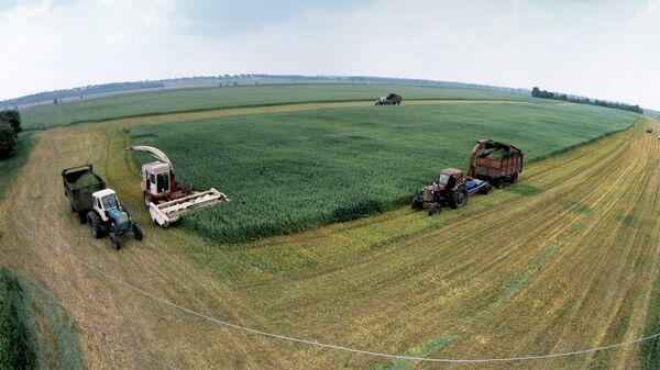 Заготовка кормов на полях колхоза в Черкасской области, Украина