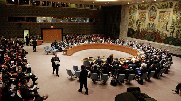 В Совбезе ООН. Архивное фото