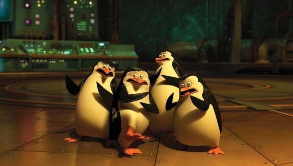Кадр из мультфильма Пингвины Мадагаскара. Архив