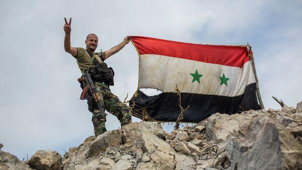 Военнослужащий правительственной армии Сирии с флагом страны. Архивное фото