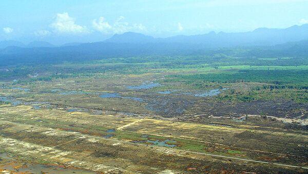 Последствия цунами 2004 года в Юго-Восточной Азии