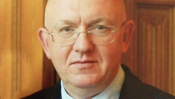 Заместитель главы МИД РФ Василий Небензя